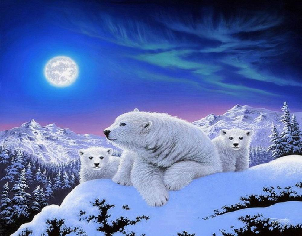 dreams-of-polar-bears